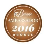 ICB bronze 2016-17