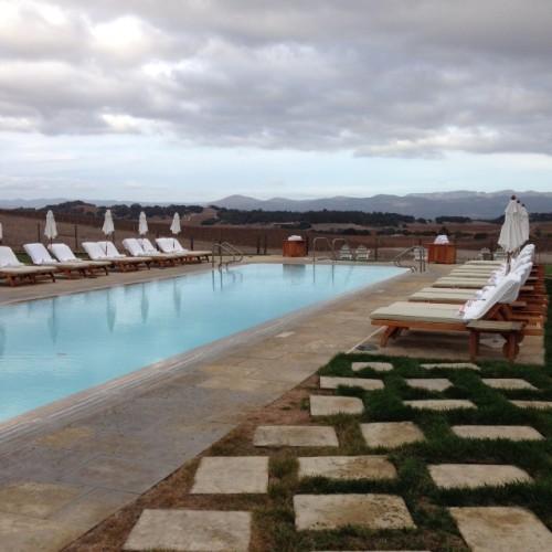 Carneros hilltop pool