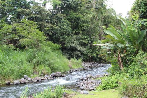 Arenal River at Club Rio at The Springs
