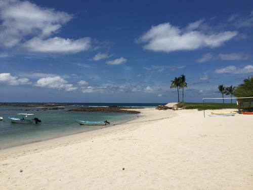 St. Regis Punta Mita beach
