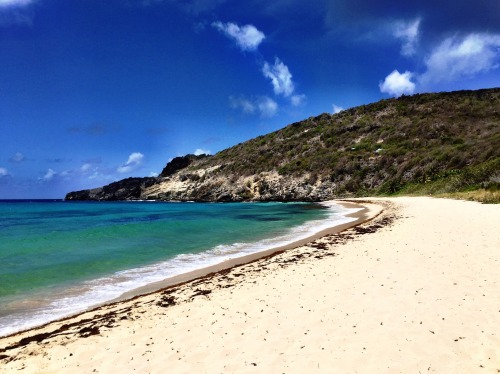 Gorgeous Gouverneur Beach on St. Barth
