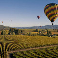 Hot air balloon over wine country.. dreamy!