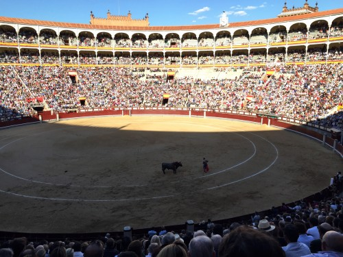 The corrida (bull fight)