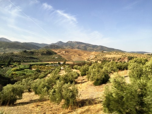 Views en route to Ronda.. Andalucia is gorgeous!