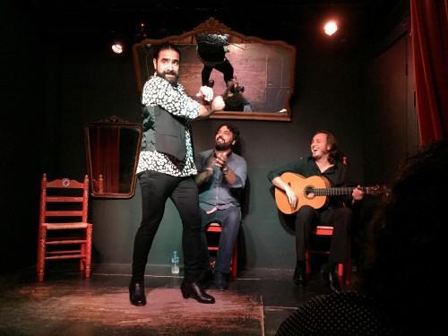 Private flamenco performance