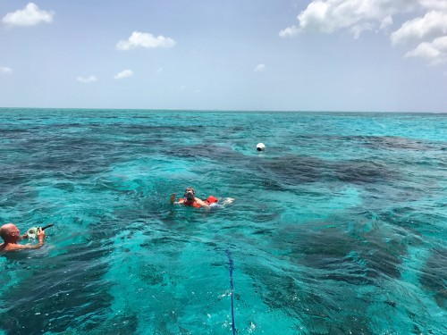 The snorkeling at Rum Point is spectacular!!